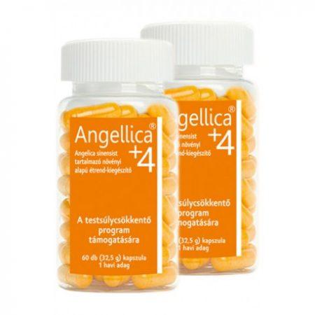 Angellica+4 2x60db